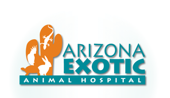 Arizona Exotic Animal Hospital