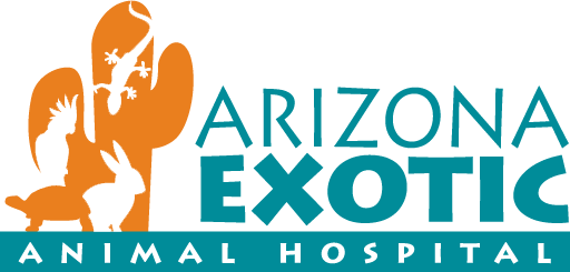 Veterinary Services Arizona Exotic Animal Hospital Veterinary Services