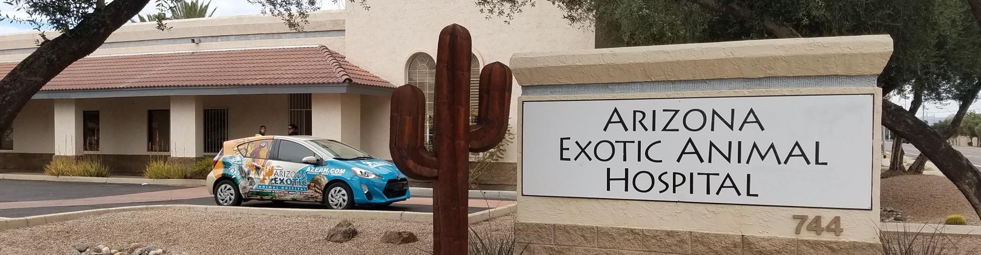 Arizona's Largest Exotic Pet Hospital